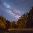 Starry night over a small forest river — Stock Photo