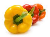 Colourful paprika — Stock Photo