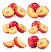 Collection of red plums — Stock Photo