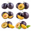 Collection of 6 plums — Stock Photo #50493437