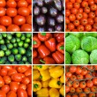 Set of vegetables backgrounds — Foto de Stock