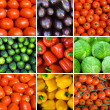 Set of vegetables backgrounds — Foto Stock