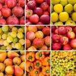 蔬菜和水果的背景 — 图库照片 #50495277