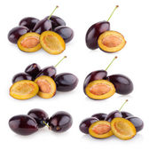 Collection of plums — Stock Photo