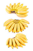 Collection of 3 bananas — Stock Photo
