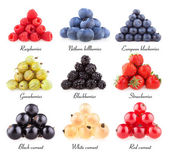Collection of 9  berries — Stock Photo