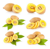 "Collection of 6 ""golden"" kiwi — Stock Photo"