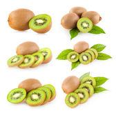 Collection of 6 kiwi — Stock Photo