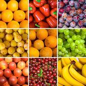 Set of fruits backgrounds — Stock Photo