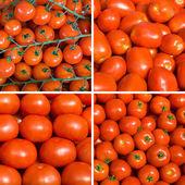 Set of ripe tomato backgrounds — Stock Photo