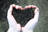 Hand holding black soil in the form of heart — Stock Photo