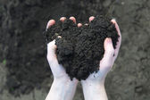 Hand holding soil — Stock Photo