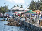 Nassau fish market — Photo