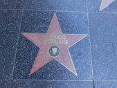 Walk of Fame — Stock Photo