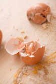 Broken eggshells — Stock Photo