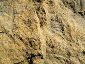 Brown stone background — Stock Photo