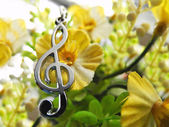 Treble clef and flowers — Stock Photo