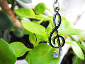 Treble clef and flowers background — Stock Photo