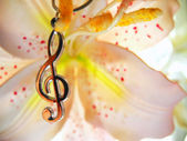 Treble clef and flower — Stock Photo
