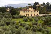 Toscana — Stockfoto