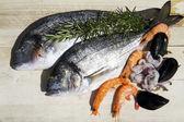 Fresh seafood — Stock Photo