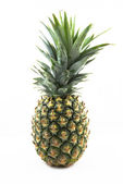 Fresh whole pineapple on white blackground — Foto de Stock
