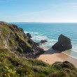 Bedruthan steps — Stock Photo #43752583