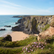 Bedruthan steps — Stock Photo #43752805