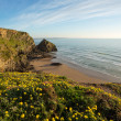 Bedruthan Steps — Stock Photo #43836915