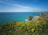 Bedruthan Steps — Stock Photo