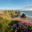 Bedruthan steps — Stock Photo #44144715