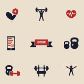 Gym and fitness icons — Stock Vector