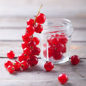 Red currant on a branch close to a glass jar — Stock Photo