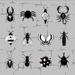 Insect world in black and white tones — Stock Vector