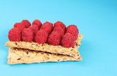Delicious toast with raspberries on table close-up , health food — Stock Photo