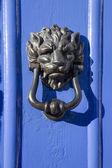 Heurtoir de porte lion visage — Photo