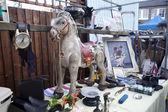 старая лошадь — Стоковое фото