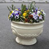 Outdoor vase — Stock Photo
