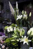 Blumen in einem kiosk. — Stockfoto