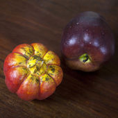 Artificial orange pumpkin with apples — Stock Photo