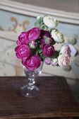 Rosa ranunculus — Stockfoto