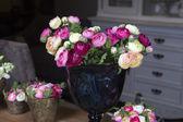 Pink ranunculus — Stock Photo