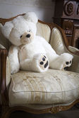 Sweet bear sitting on white chair — Stock Photo