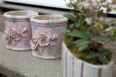 Pink pots — Stock Photo