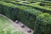 Tracks of a swirling maze — Stock Photo