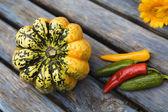 Beautiful fresh pumpkins — Stock Photo