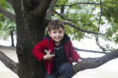 Smiling boy handing from a tree branch — Stock Photo