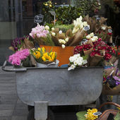 Flowers in trolley — Stock Photo