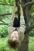 Cute boy hanging from branch of tree — Stock Photo