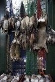 Peles de animais no mercado — Fotografia Stock